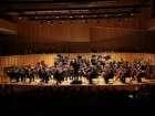 Orquesta estable del colon